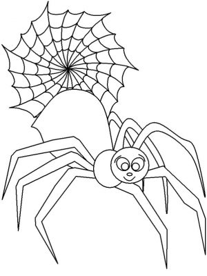 Spider Coloring Pages Printable fz01