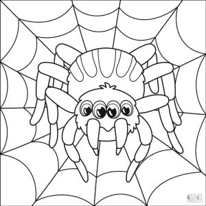 Spider Coloring Pages for Toddlers fr24