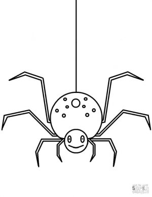 Spider Coloring Pages for Toddlers wr62