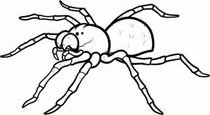 Spider Coloring Pages to Print Spider Printable