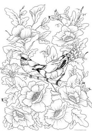 Spring Coloring Pages Free for Grown Ups A Couple of Birds and Beautiful Flowers