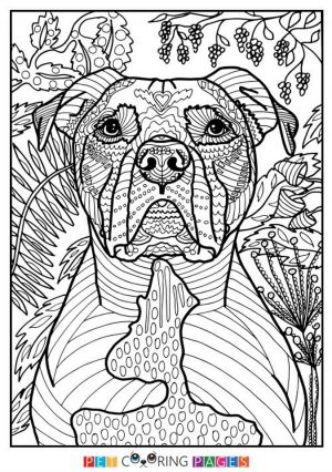 Summer Coloring Pages to Print Out for Adults – 03127