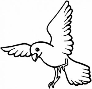 Bird Coloring Pages Free to Print   35164