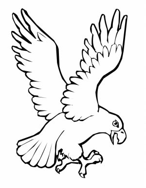 Bird Coloring Pages Kids Printable   96746