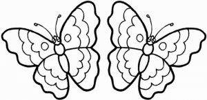 Butterfly Coloring Pages Printable   idh81