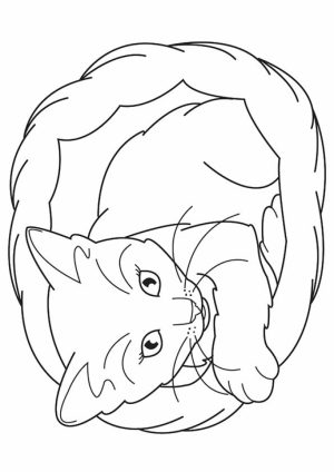 Cat and Kitten Coloring Pages Free to Print   67491