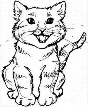 cat coloring pages free 8fy40