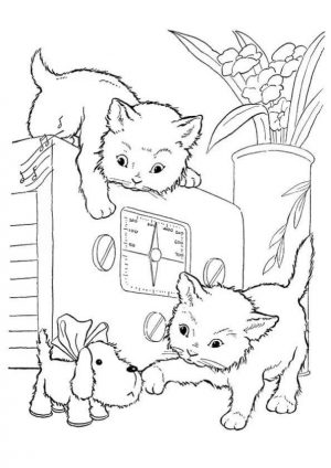 cat coloring pages to print 8dg50