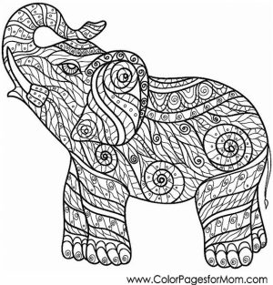 Challenging Coloring Pages of Elephant for Adults   7g6df3