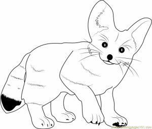Cute Fox Coloring Pages   wa522
