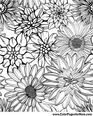 detailed flower coloring pages for adults printable – ycv42