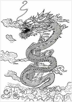 Dragon Coloring Pages for Adults to Print   17×52