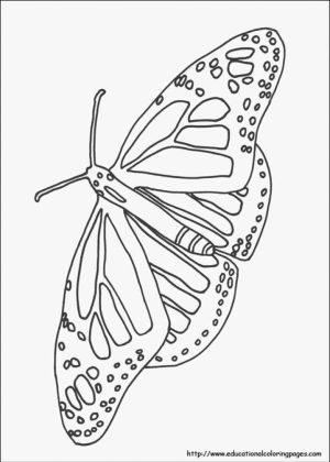 Easy Nature Coloring Pages for Preschoolers   9iz28