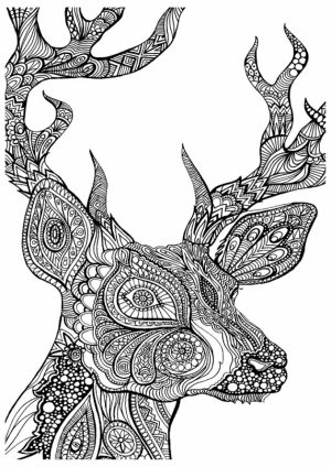 Fall Coloring Pages for Adults   dd4573