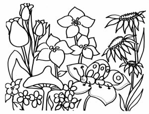 Flowers Coloring Pages for Kids   0560