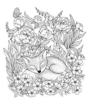 Fox Coloring Pages for Adults   2ml85