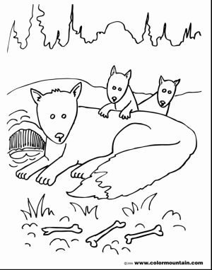 Fox Coloring Pages Printable   way4n
