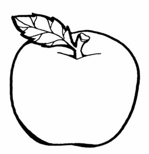 Free Apple Coloring Pages   18fg17