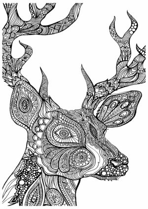 Free Grown Up Coloring Pages   42893