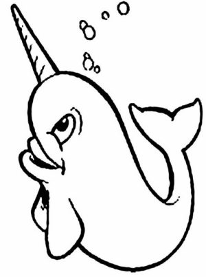 Free Narwhal Coloring Pages   34753