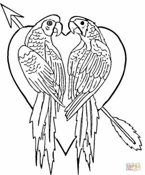 Free Parrot Coloring Pages to Print   18251