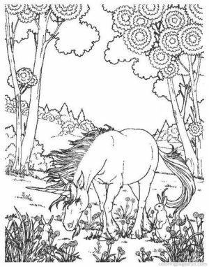 Free Printable Unicorn Coloring Pages for Adults   DR382