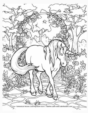Free Printable Unicorn Coloring Pages for Adults   MN941