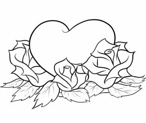 Free Roses Coloring Pages for Adults   25762