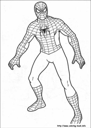 Free Spiderman Coloring Pages   706099
