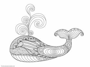 Free Whale Coloring Pages to Print   18251