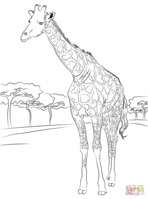 Giraffe Coloring Pages Hard Printables for Older Kids   64178