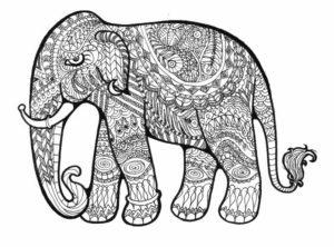 Mandala Elephant Coloring Pages   9f2fg6
