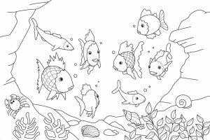 Ocean Coloring Pages for Preschoolers   way3m
