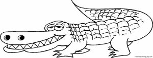 Online Alligator Coloring Pages for Kids   sz5em