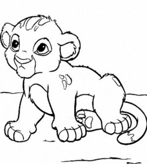 Online Baby Animal Coloring Pages   17433