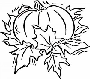 Online Blank Coloring Pages for Kids   OS92R
