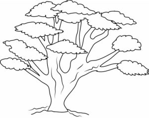 Online Tree Coloring Pages to Print   B9149