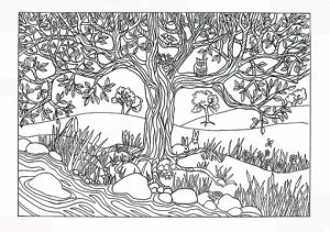 Preschool Printables of Nature Coloring Pages Free   b3hca