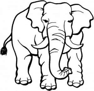 Printable Elephant Coloring Pages for Kids   896342