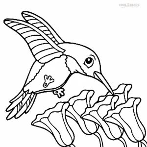 Printable Hummingbird Coloring Pages   58425