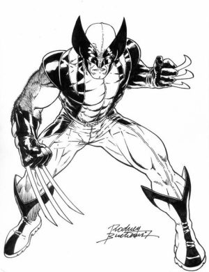Printable Image of Wolverine Coloring Pages   UpIuI