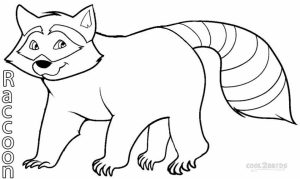 Printable Raccoon Coloring Pages   77764