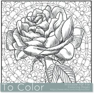 Printable Roses Coloring Pages for Adults Online   91060
