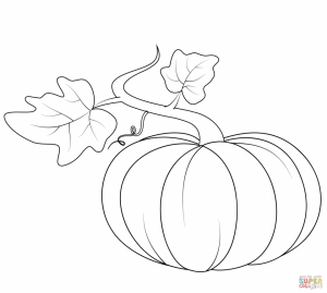 Pumpkin Coloring Pages Kids Printable   73619
