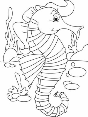 Seahorse Coloring Pages Free Printable   16479
