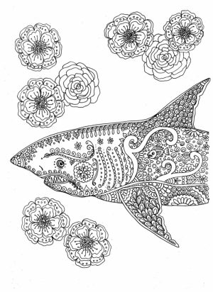 Shark Coloring Pages for Adults   67831
