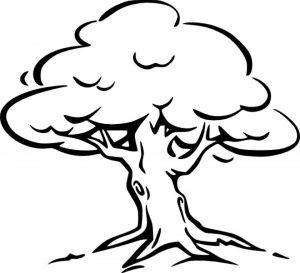 Simple Tree Coloring Pages to Print for Preschoolers   0VJOR