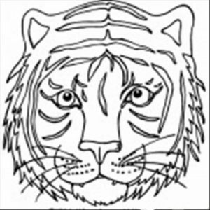 Tiger Face Coloring Pages Free Printable   37192