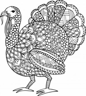 Turkey Coloring Pages for Adults   31218