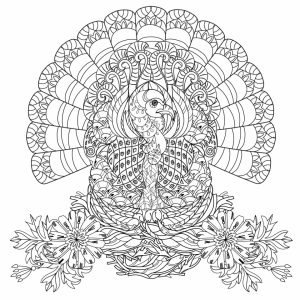 Turkey Coloring Pages for Adults   64166